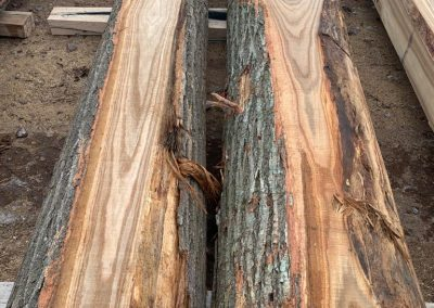 American Chestnut Cants & Fitches 1