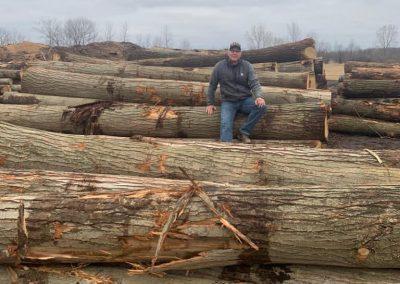 American Chestnut Lumber 12