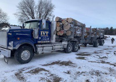OnTruckAmerican Chestnut Logs 10