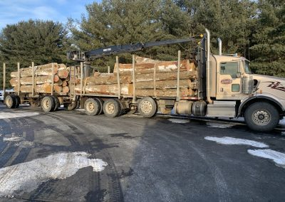 OnTruckAmerican Chestnut Logs 11